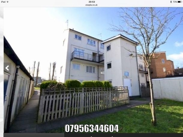 to rent house Borehamwood